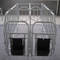 2016 Cheap Hot DIP Galvanized Pig Fence