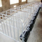 Sow Crate/Pig Fence with Manger for Raising Pig
