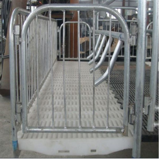 Hot DIP Galvanizing Steel Enclosure for Pig Breeding